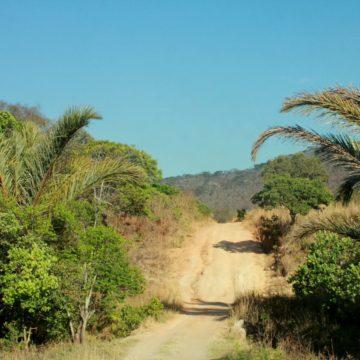 Zambia wildparken konvooi 4x4 reis